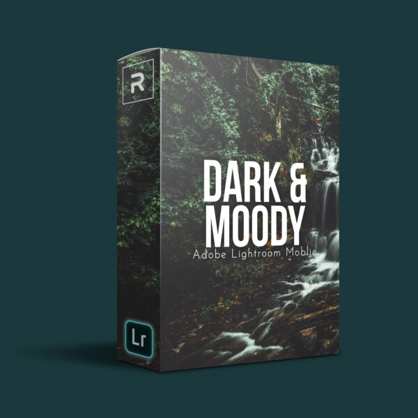 Dark & Moody Preset (Lightroom Mobile)